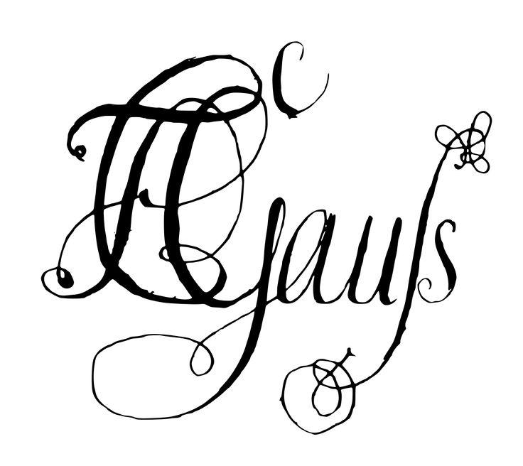 Carl Friedrich Gauß signature - Carl Friedrich Gauss - Wikipedia