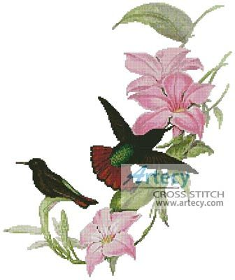 Hummingbirds Cross Stitch Pattern http://www.artecyshop.com/index.php?main_page=product_info&cPath=1_4&products_id=409