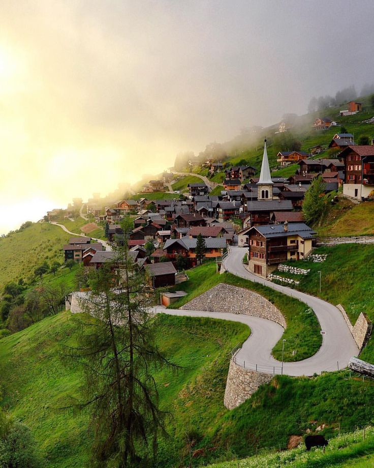 A small village with less than 200 people Wallis - Switzerland You see the pretty black cow in…""