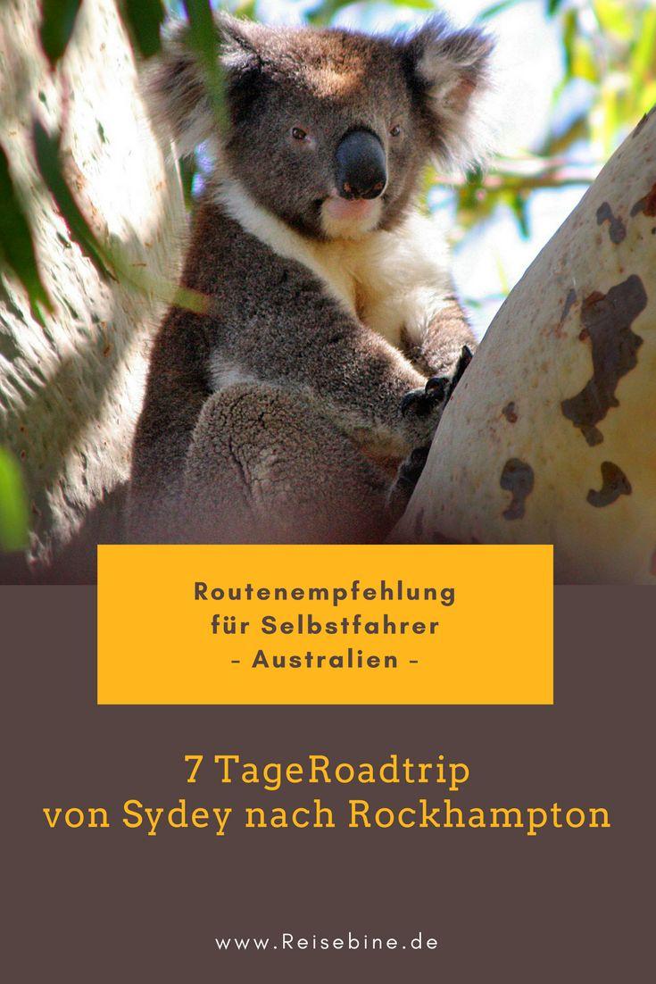 Die Inland-Route von Sydney nach Rockhampton mit dem Mietwagen #Australien #Reisen #NSW #Queensland