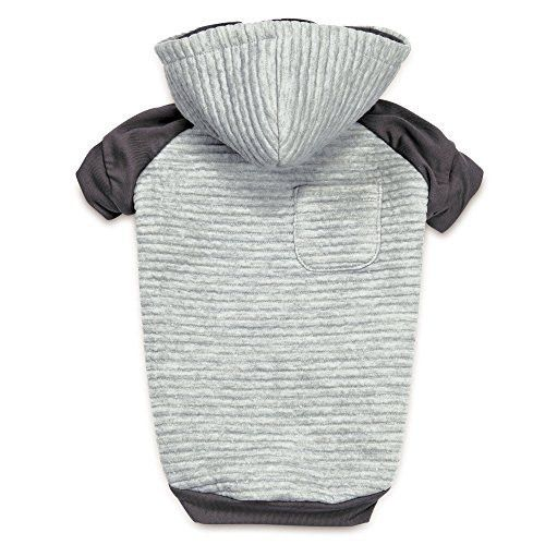 Zack & Zoey Elements Textured Stretch Hoodie for Dogs, X-Small