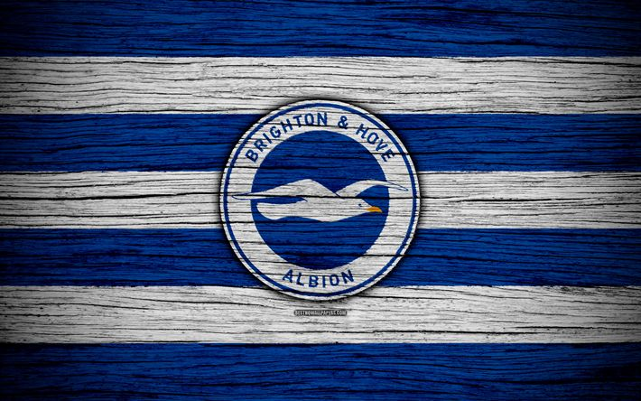 Download wallpapers Brighton and Hove Albion, 4k, Premier League, logo, England, wooden texture, FC Brighton and Hove Albion, soccer, football, Brighton and Hove Albion FC