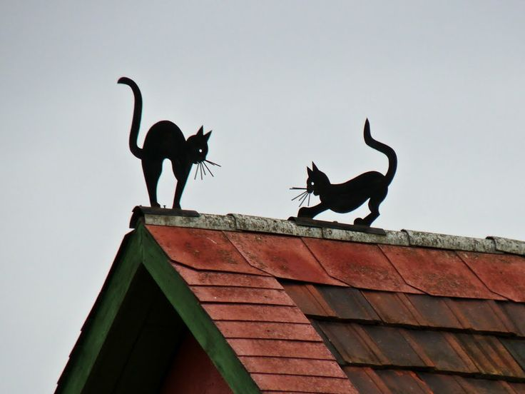little things on the roof - Érd, Hungary