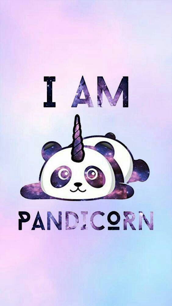 Panda / Licorne - Fond d'écran   Images en 2019   Fond d'écran panda, Fond ecran et Fond ecran ...