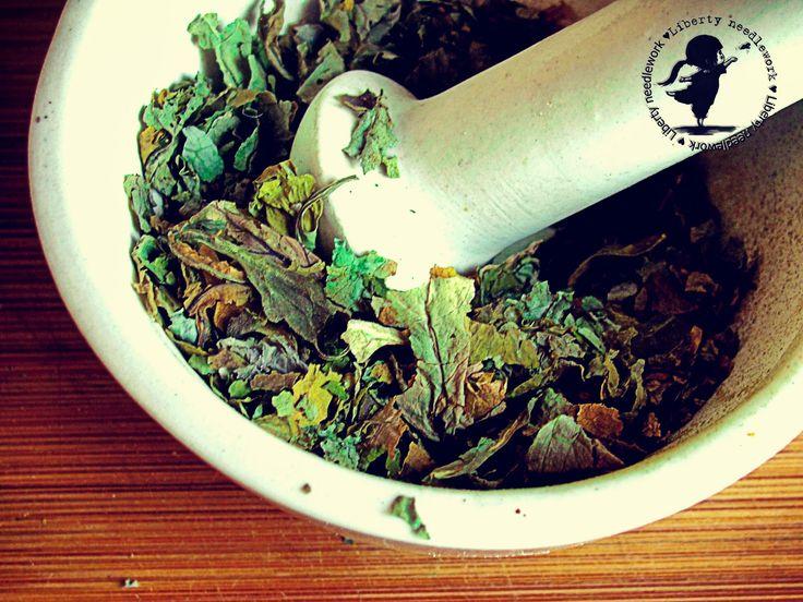 крапива, свойства, описание, рецепт, трава, травы, косметика, натуральная, эко, красота, волосы, сильные, здоровые, крепкие, сильные