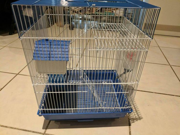 2 Level Cage Deal. Cage deal comes with Cage, food, bedding