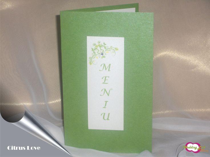 Meniu pentru nunta realizat din carton verde sidefat si accesorizat cu un stras. 4,1 RON* *Pretul include TVA, personalizare (imprimare color) si asamblare **Acest articol poate fi realizat si in a...