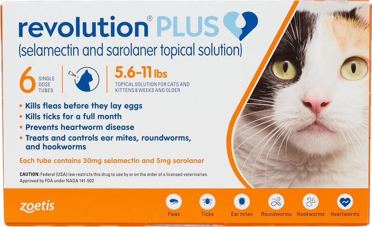 Revolution Plus For Cats 11 1 22 Lbs 6 Ct Topical Medication Pet Health Revolution