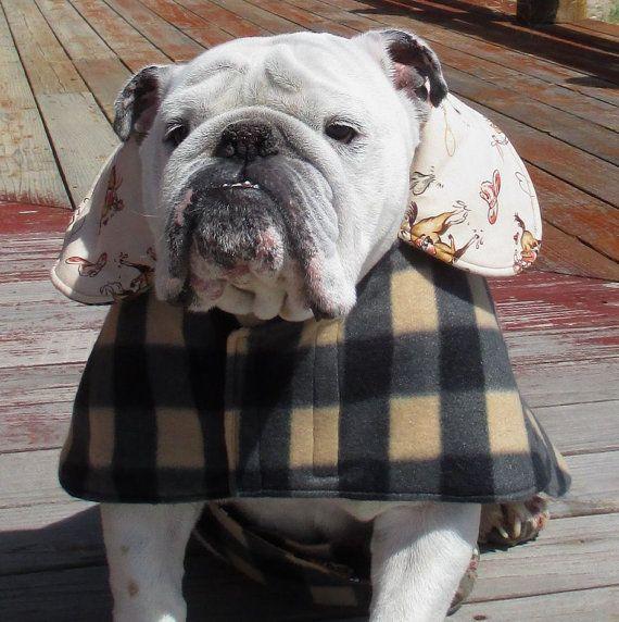 ENGLISH BULLDOG Reversible Coat,Fleece,Fall, winter dog