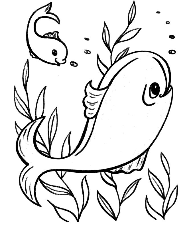 easy coloring pages ocean fish