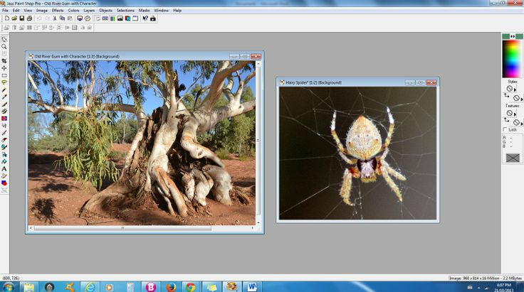 Photo edits- Both First and Second Images to insert into one another - InfoBarrel Images