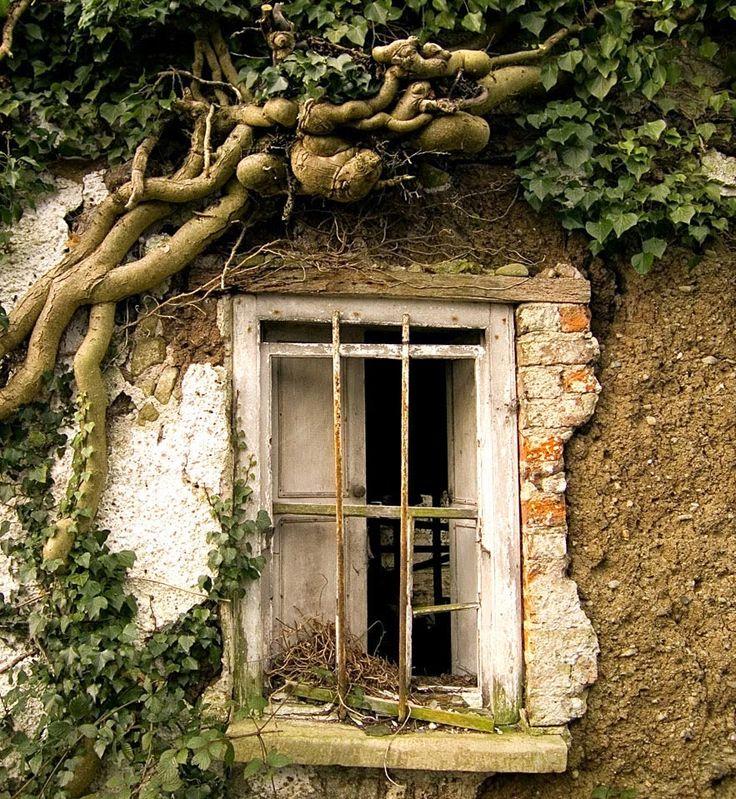 Resultado de imagen para imagenes ventanas rusticas