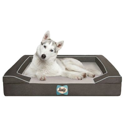 Sealy Lux Bolster Dog Bed