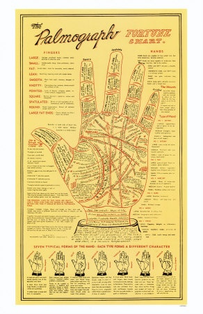 Which is the best book for palmistry for beginners? - Quora