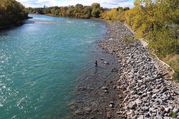 Fly fishing on the Bow River in Calgary. | 14 Sites In Alberta That Will Make You Feel Alive