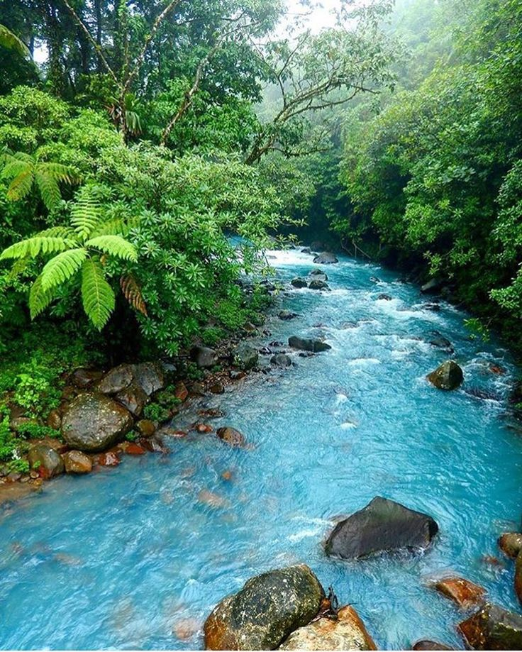 Rio Celeste, Costa Rica - A turquoise blue river going through a deep green jungle. Who needs photoshop when nature is this perfect?