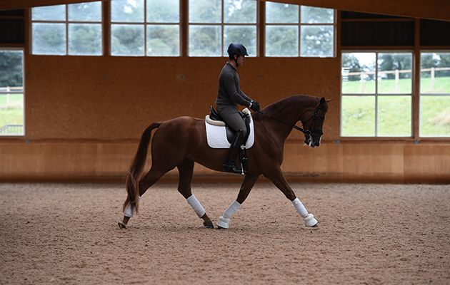 The Olympic dressage silver medallist shares three exercises to help improve the rideability of the horse, giving the rider control, confidence and calmness