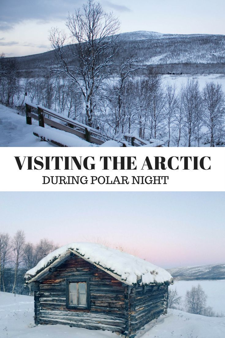 Everything you need to know about visiting the Arctic during Polar Night | Lapland