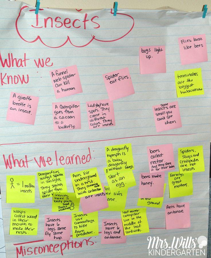 Best 25+ Lesson plan for kindergarten ideas on Pinterest Teacher - kindergarten lesson plan