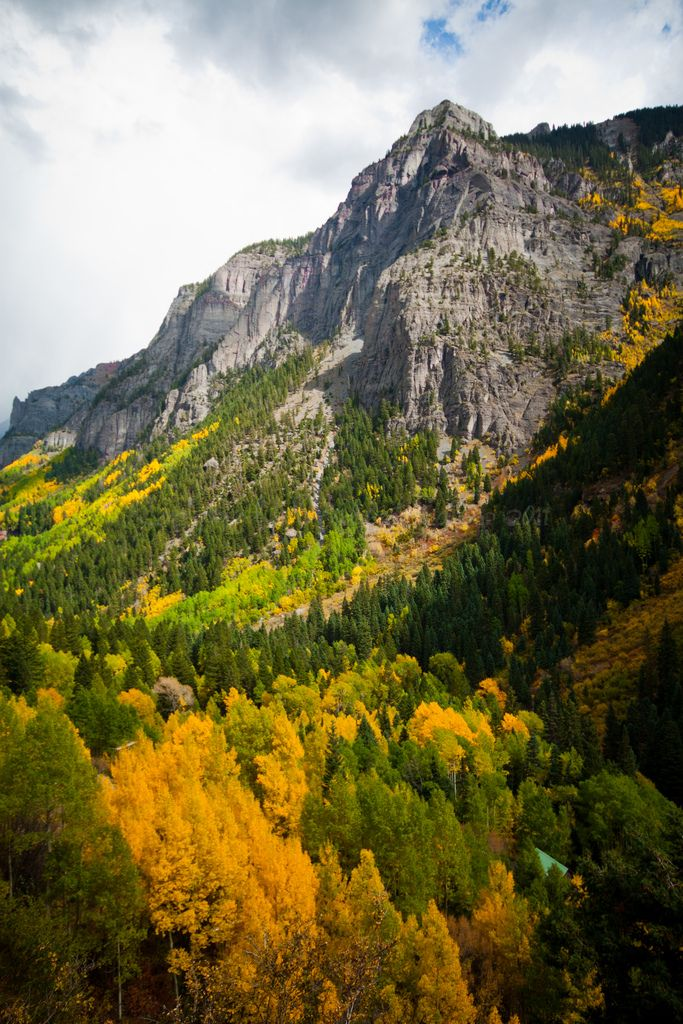 ouray county singles Search ouray county real estate property listings to find homes for sale in ouray county, co browse houses for sale in ouray county today.
