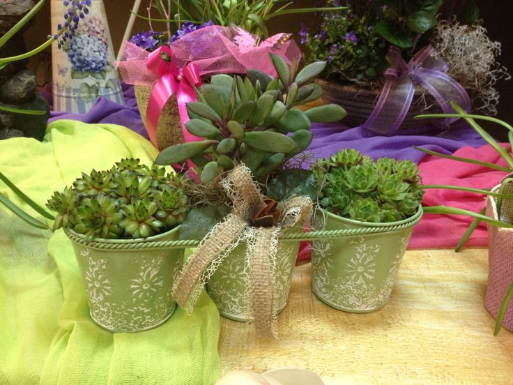Three small pots in one