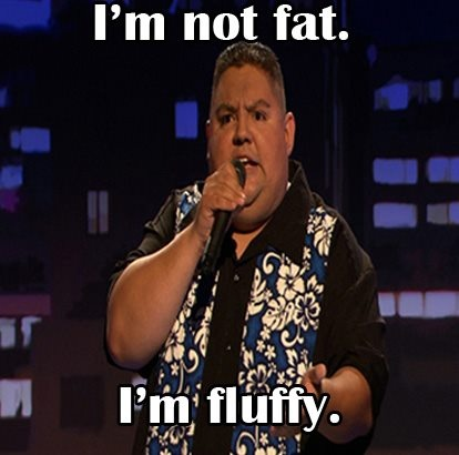 Gabriel Iglesias, one of the funniest comics in the world. If his jokes don't make you laugh, his giggling will.