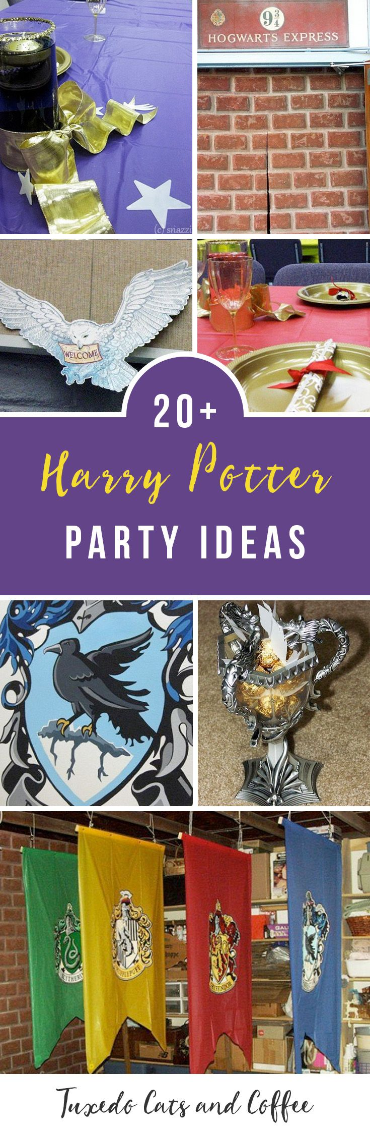 We held this Harry Potter party as an awards ceremony and end-of-the-year banquet for a group at a high school. This post will give you Harry Potter party ideas and show you how to hold your own Harry Potter birthday party and make all the decorations you need to transform your house or a banquet hall or any large room into the Hogwarts great hall, complete with an extra guide showing you how to make Harry Potter recipes like Honeydukes's sweets and other baked goods. Here is our ultimate…
