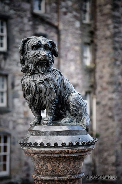 A memorial sculpture to Greyfriar's Bobby in Edinburgh, Scotland.  According to legend, Greyfriar's Bobby, a Skye Terrier, guarded the grave of his owner, an Edinburgh policeman, for 14 years until he himself died in 1872.