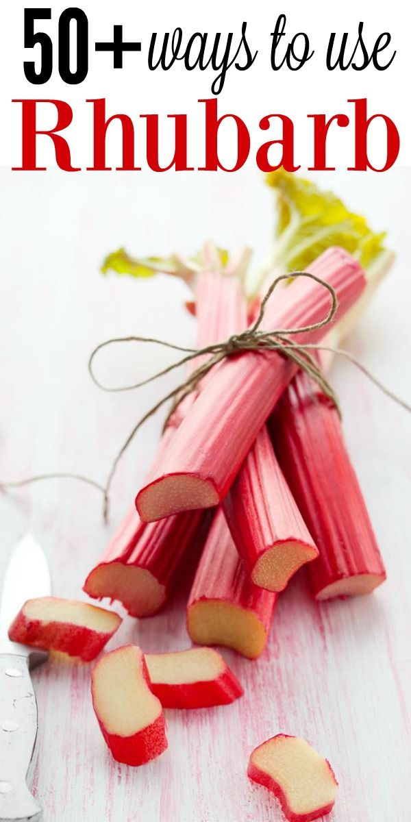 50+ Ways To Use Rhubarb! // deliciousobsessions.com