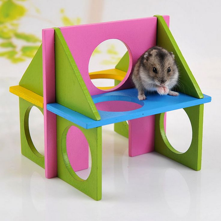1PC Pet Rat Toy Mouse Rat Hamster Toy Wooden Funny Natural Gym Playground Exercise Safe Training Play Toys //Price: $6.92 & FREE Shipping //     Get it here ---> https://thepetscastle.com/1pc-pet-rat-toy-mouse-rat-hamster-toy-wooden-funny-natural-gym-playground-exercise-safe-training-play-toys/    #catoftheday #kittens #ilovemycat #lovedogs #pup