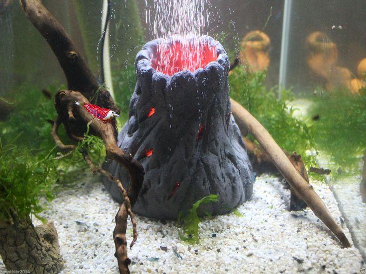 8 besten Aquarium Bilder auf Pinterest Aquarien, Deko ideen und - deko fur aquarium selber machen