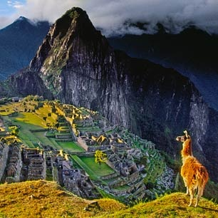 Peru -- me want alpaca: Buckets Lists, Dreams Places, There Peru, Favorite Places, Peru Yesss, Travel Future, Places I D, Travel Bugs, To Do Travel