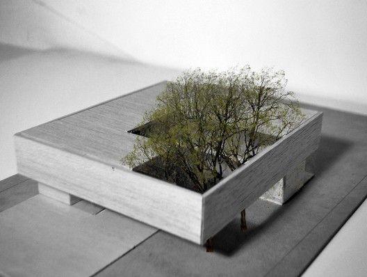 Lamas House,Model
