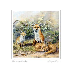 Vixen and cubs