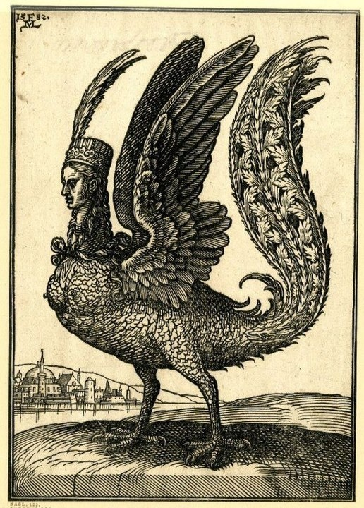 .A harpy by Melchior Lorck,c. 1582