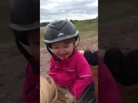Little girl laughs on horse ride. This is fun. And I noticed the good camera work, too. It almost looks like a steady-cam was used. Believe me, I've seen enough jiggle-cam to last me until the end of time!