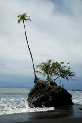 incredible peace, virgin beaches Nuquí Colombia
