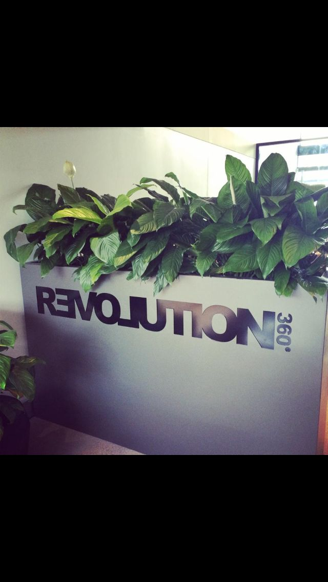 Custom planter for a company, office/divider