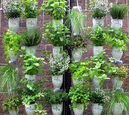 Great idea for indoor gardening.