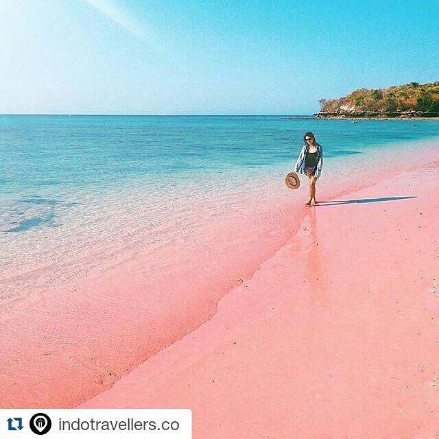 Pink Beach East Lombok #Repost @indotravellers.co with @repostapp Salah satu tempat menarik di Lombok tetapi masih jarang dikunjungi wisatawan adalah kawasan pantai Tangsi yang lebih populer disebut Pink Beach. Keunikan pasir pantainya yang berwarna semu kemerahan ini membuat penasaran turis domestik maupun mancanegara. Fenomena yang lebih cocok dilihat saat musim kemarau (mei-oktober) ini berupa efek cahaya matahari sore yang menerpa permukaan pasir. Anda ingin menguak seperti apa keindahan…