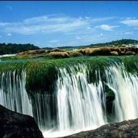 Foto de Amazonas