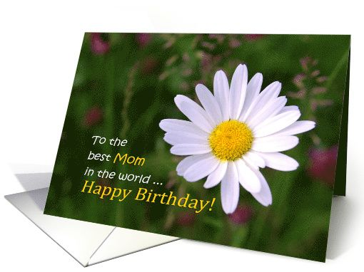 Happy Birthday, Mom - White daisy flowers natural card  by steppeland