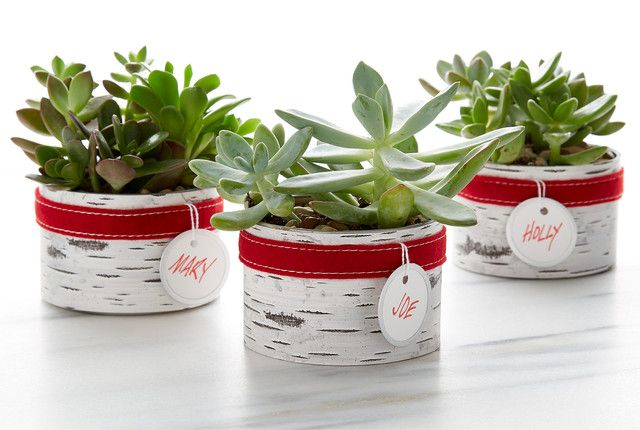Easy diy homemade holiday gifts homemade the o 39 jays and for Holiday gift ideas clients