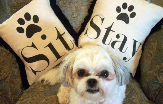 $34.50 Set of SIT & STAY Pillows - for dog groomer, just too cute!