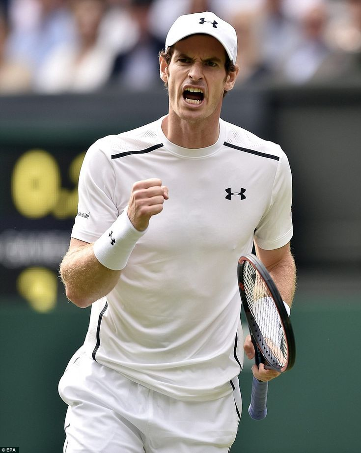 Fist pump: Andy Murray celebrates scoring against Yen-Hsun Lu of Taiwan