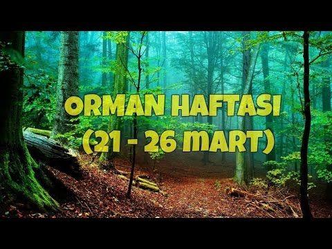 Orman Haftası (21-26 Mart) Orman Haftası (21-26 Mart) Orman Haftası (21-26 Mart ) #ormanhaftası  #orman #belirligünvehaftalar #güzelsözler