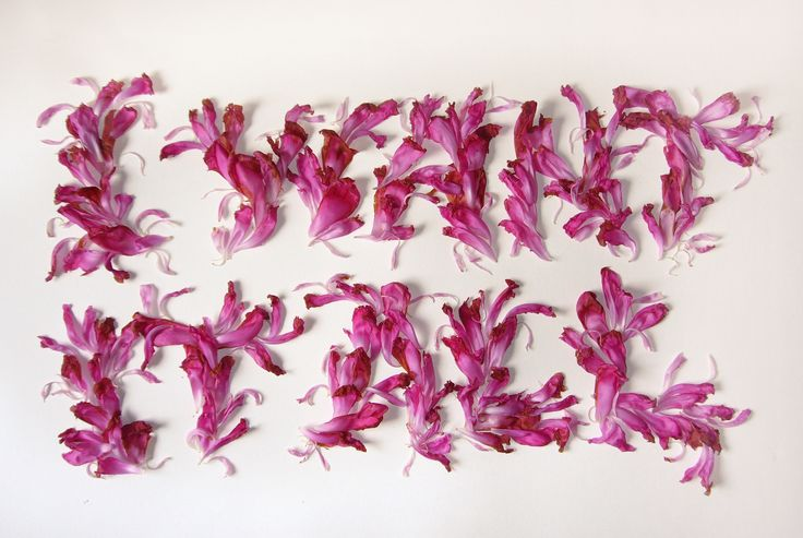 Marian Bantjes, I want it all, peony petals, 2006 | #graphic #design #mudac #typography #wunderkammer