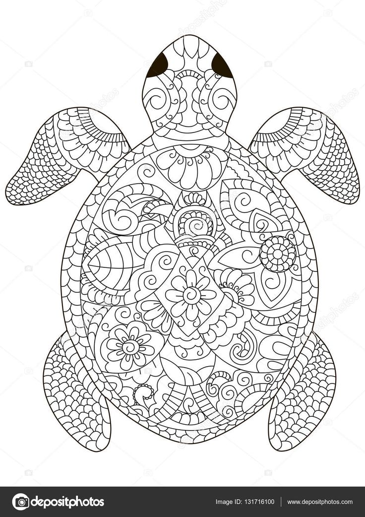 237 Best Coloring Turtle, Penguin Images On Pinterest