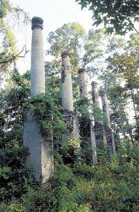 Ruins of Verdura Plantation, Tallahassee