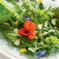 Dragsholm: SALAT MED ØSTERS OG BLOMSTER --- Maybe not Old Old Tradition, but in current cooking -- edible flowers are so lovely w/fish & poteter. Especially when they're 'good' - around midsommer.